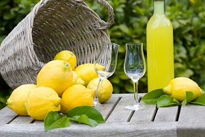 Lemon Tour. Services. Wedding Planner in Amalfi Coast and Puglia. Mr and Mrs Wedding in Italy